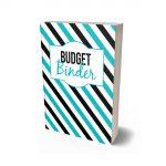 Deluxe Budget Binder